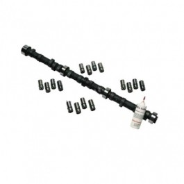 Camshaft and Lifter Kit  Fits  81-86 CJ with 4.2L 6 Cylinder