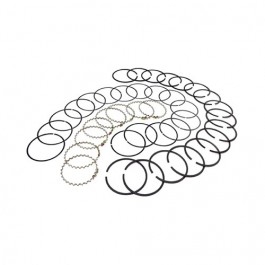Piston Ring Set in Standard  Fits  76-86 CJ with V8 304