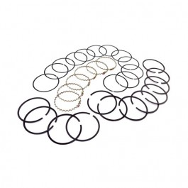 Piston Ring Set in Standard  Fits  76-86 CJ with 6 Cylinder 199 232 258