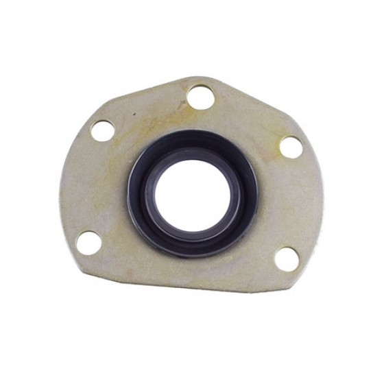 1 Piece Outer Axle Seal, 76-86 CJ with Rear AMC20