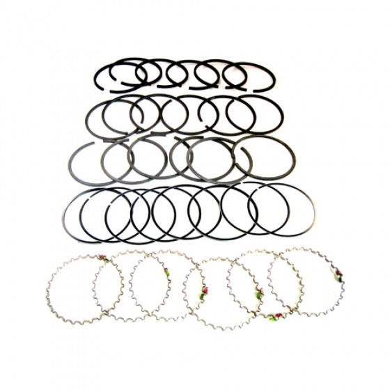 New Complete Piston Ring Set - Standard Fits 50-55 Station Wagon, Jeepser with 6-161 engine