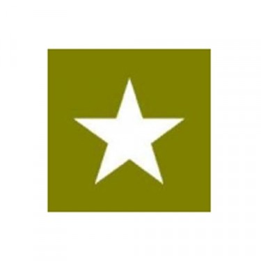 """Paint Mask Stencil 10"""" Star Fits 41-71 Jeep & Willys"""