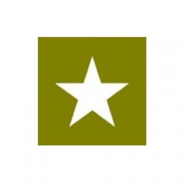 """Paint Mask Stencil 12"""" Star Fits 41-71 Jeep & Willys"""