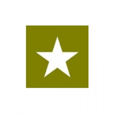 """Paint Mask Stencil 15"""" Star Fits 41-71 Jeep & Willys"""