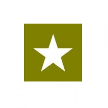 """Paint Mask Stencil 20"""" Star Fits 41-71 Jeep & Willys"""