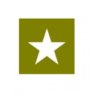 """Paint Mask Stencil 3"""" Star Fits 41-71 Jeep & Willys"""