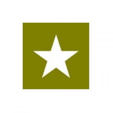 """Paint Mask Stencil 6"""" Star Fits 41-71 Jeep & Willys"""