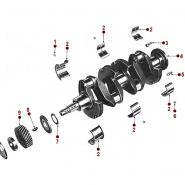 4-134 Engine - Crankshaft & Bearings